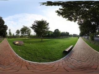 广州二沙岛公园小径