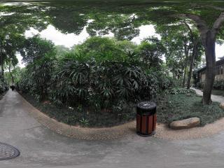 广州中山纪念堂后面
