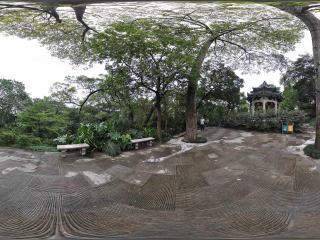 广州博物馆林中亭