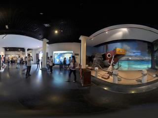 广州博物馆海上遗迹