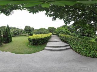 广州云台花园草坪