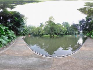广州越秀公园湖水