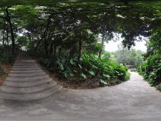 广州越秀公园上山路全景