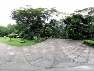 广州越秀公园空场