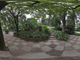 广州越秀公园林荫路