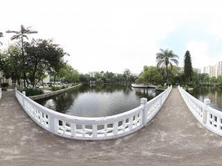 广州暨南大学湖中岛