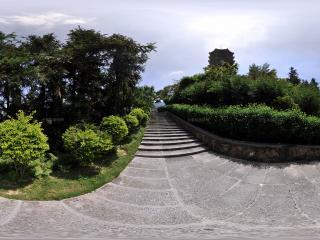 深圳仙湖植物园向上台阶