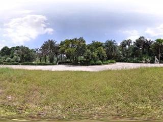 深圳仙湖植物园草坪