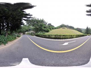 深圳仙湖植物园公路