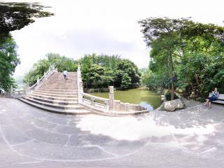 深圳仙湖植物园湖中小桥