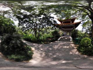 深圳仙湖植物园树影藏亭