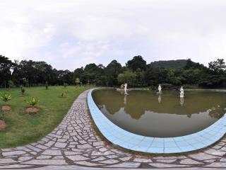深圳仙湖植物园池塘