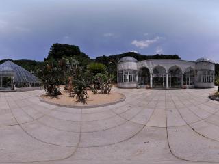 深圳仙湖植物园温室