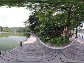 深圳仙湖植物园湖中石舫