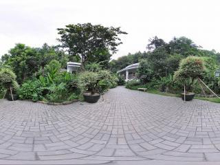 深圳仙湖植物园