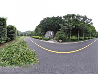 深圳仙湖植物园山路