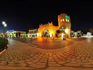 突尼斯哈马马特古城堡