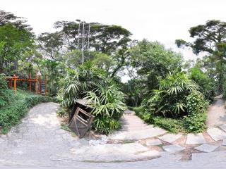 深圳欢乐谷林荫路