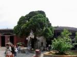 安徽亳州花戏楼之三全景