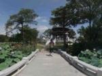 惠州荷花亭(丰渚园)全景