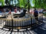 颐和园铜牛全景