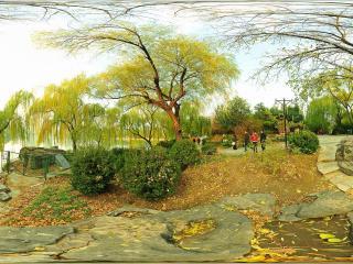 北京紫竹院公园-免票公园