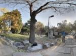 石景山雕塑公园全景
