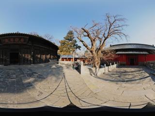 大觉寺-无量寿佛殿