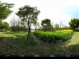 世纪公园之一全景