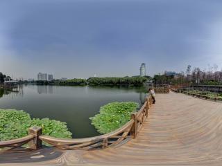流花湖的湖