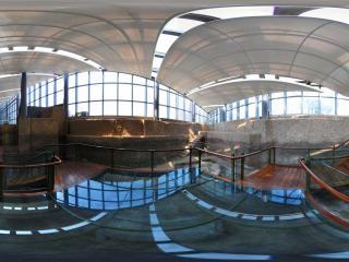 圩墩遗址博物馆