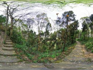 大足石刻虚拟旅游