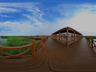 天津—七里海湿地全景