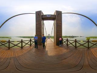 天津—七里河国家湿地公园索桥全景
