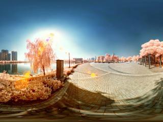 山东—菏泽红外全景:夏天的记忆(三)全景