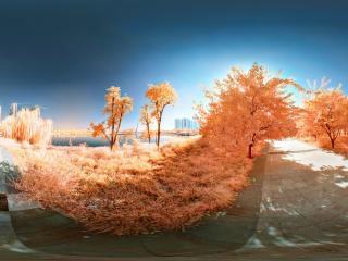 山东—菏泽夏天的记忆(一)全景