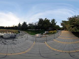 北京—玉渊潭公园荷塘秋色(二)