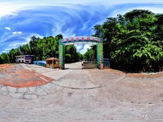 赤水竹海虚拟旅游