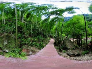 侏罗纪公园虚拟旅游