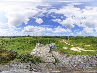贵州—毕节百里杜鹃双乳峰