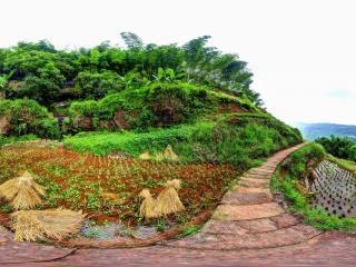 贵州—赤水梯田风景区全景