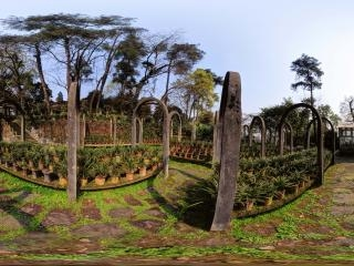 南山植物园虚拟旅游