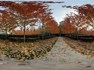 上海—静安杏树林全景