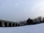 颐和园2013.01.21早雪后全景