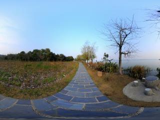湖北—武汉马鞍山森林公园湿地公园