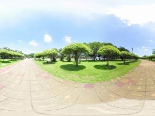 海南—海口万绿公园万绿公园全景