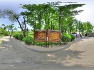 枣园虚拟旅游