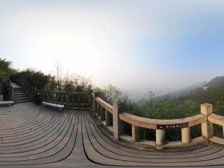 茶山竹海虚拟旅游