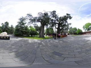 轩辕庙虚拟旅游