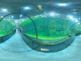 海底隧道全景